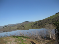 Nicasio Reservoir  » Click to zoom ->