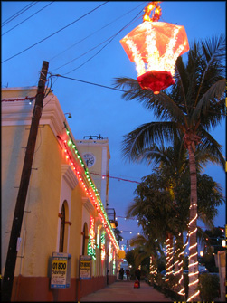 San Jose del Cabo Christmas Lights.jpg